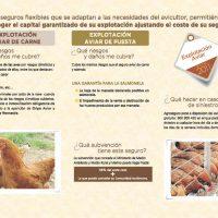 Agroseguro explotacion