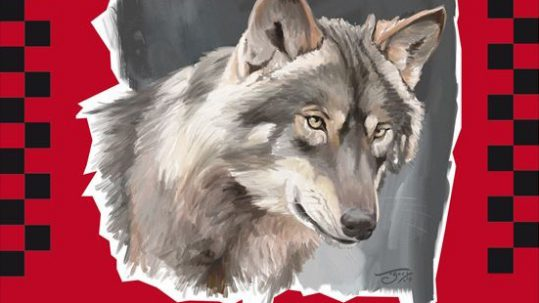lobo-mundo-rural-extremadura