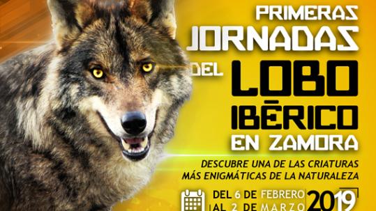 jornada-lobo-iberico-zamora