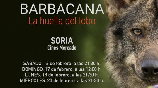 barbacana-cine-arturo-menor-lobo