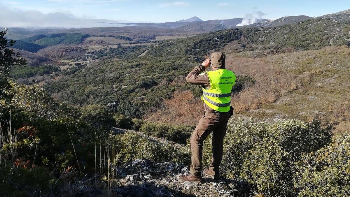 dia-agente-forestal-medioambiental