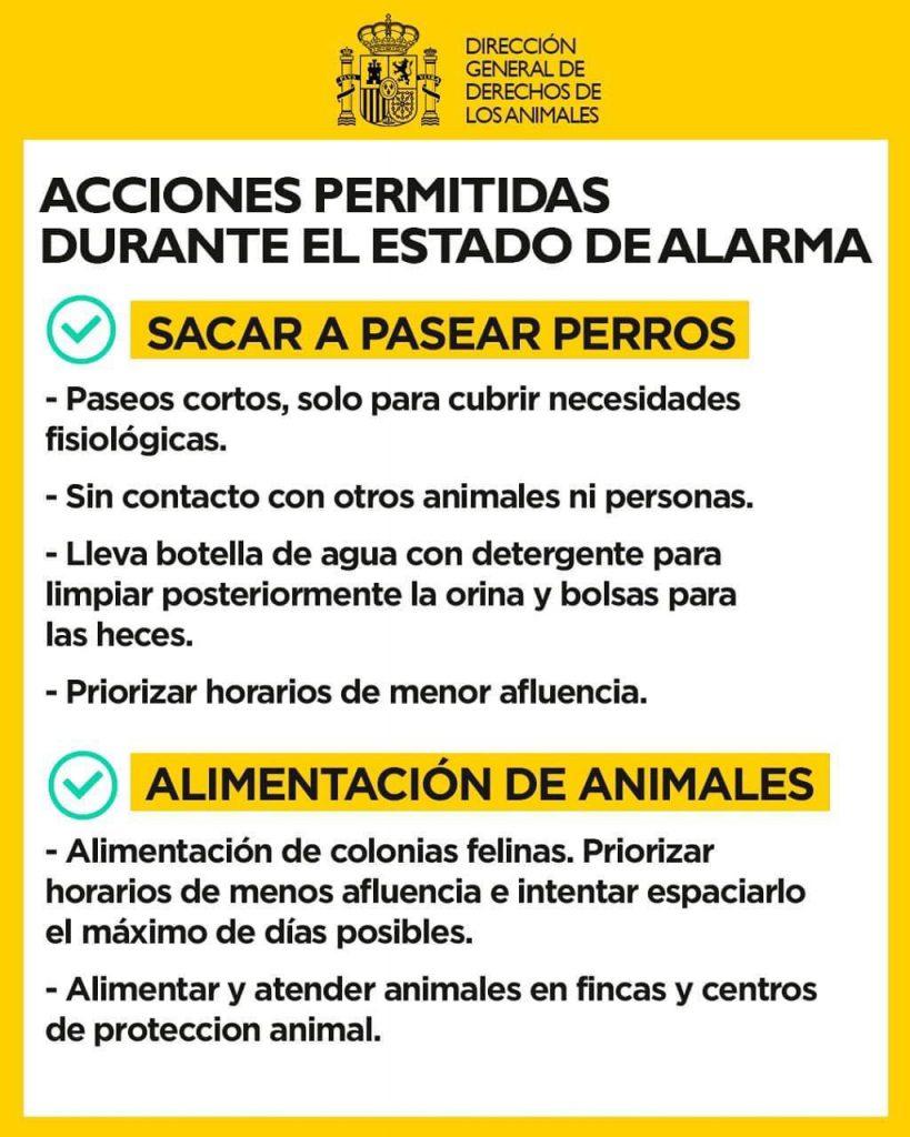 estado-de-alarma-coronavirus-mascota