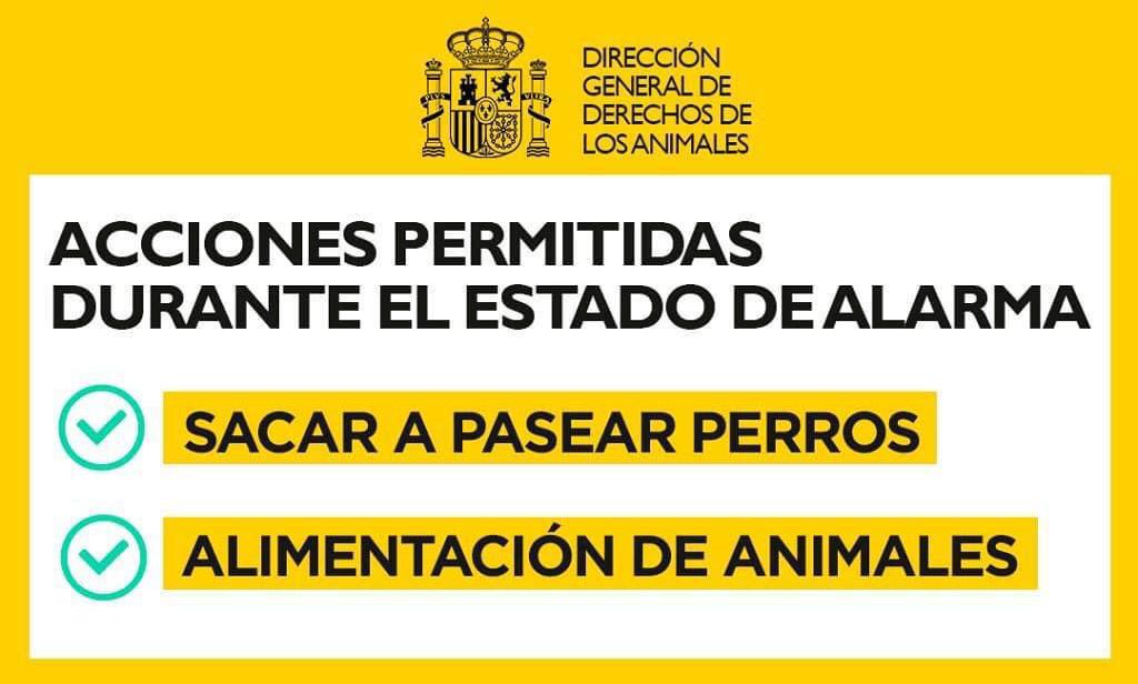 estado-de-alarma-coronavirus-mascota-cartel
