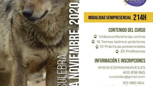 titulo-gestion-conservacion-lobo-iberico