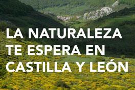 Boletín Primavera Castilla y León