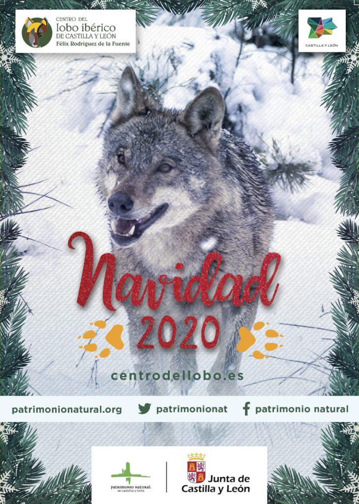 Navidad Centro del Lobo Zamora