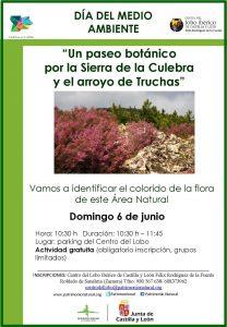 dia-medio-ambiente-paseo-botanico