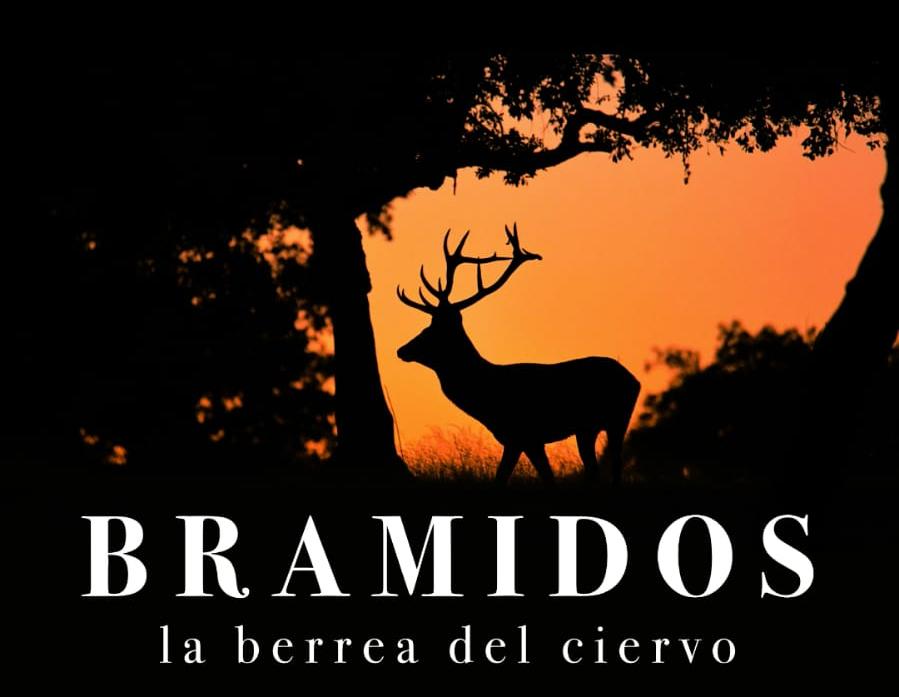 bramidos-berrea-ciervo