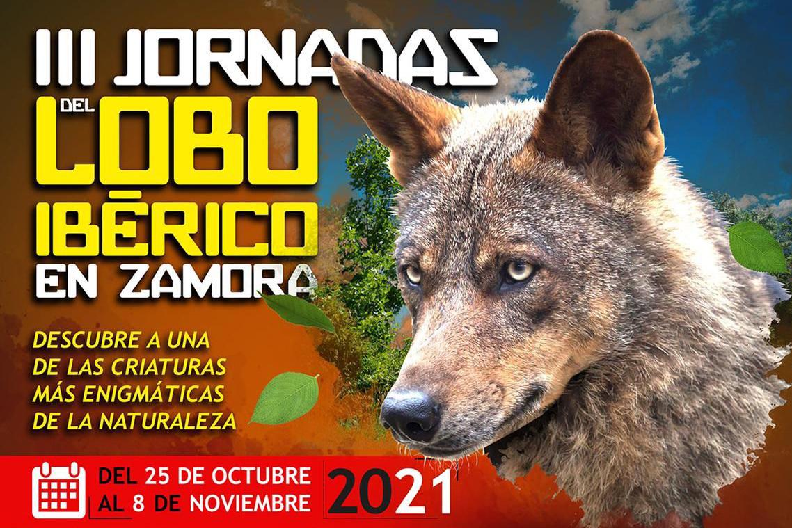 jornadas-lobo-iberico-zamora-2021-baner